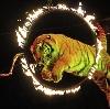 Цирки в Зарайске